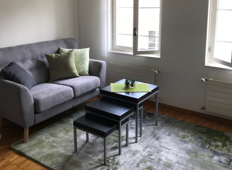 1 bedroom apartment «Altstadt 3» Rent